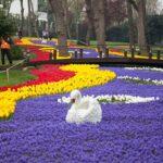 парк Эмирган, Стамбул